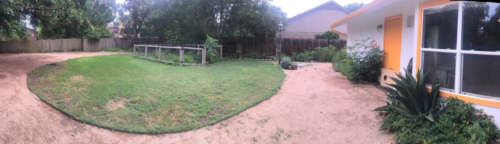 backyard_after