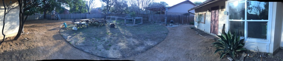 backyard_before